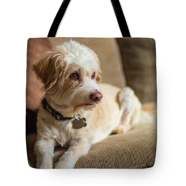 My Best Friend Tote Bag
