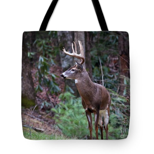 Tote Bag featuring the photograph My Best Side by Douglas Stucky
