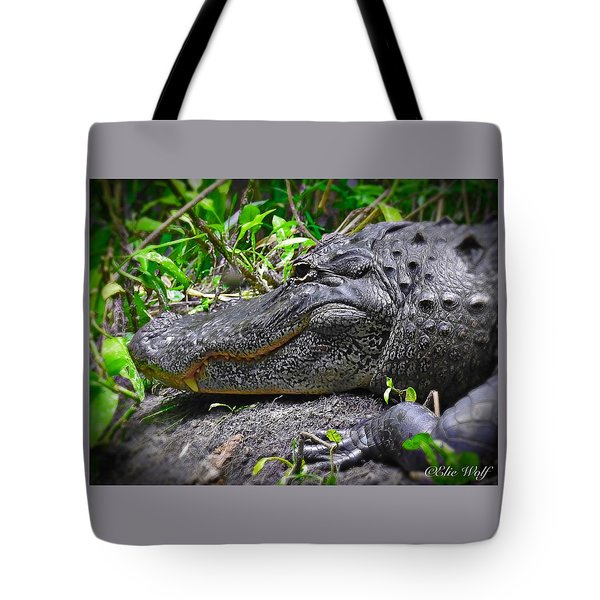 My Big Toothy Grin Tote Bag