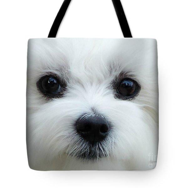 My Boy Tote Bag