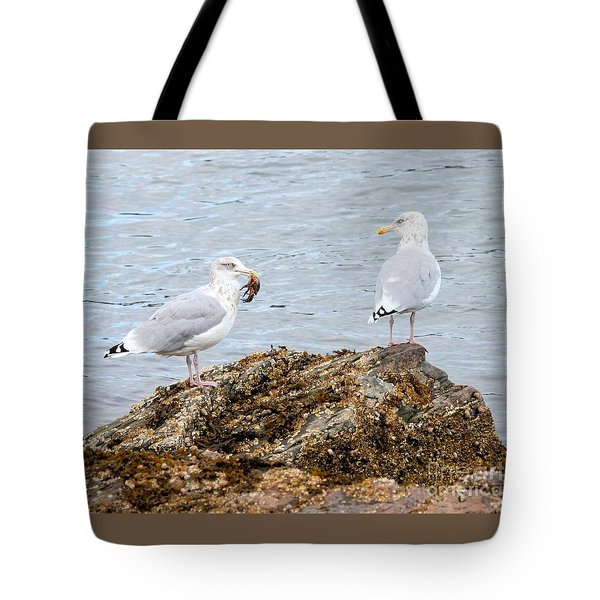 Tote Bag featuring the photograph My Crab Go Away by Debbie Stahre