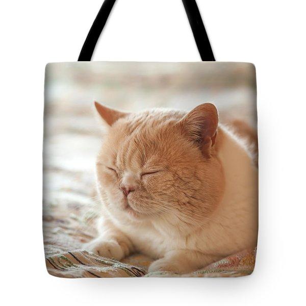 My Cute Hairball Tote Bag
