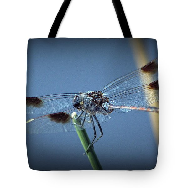 My Favorite Dragonfly Tote Bag