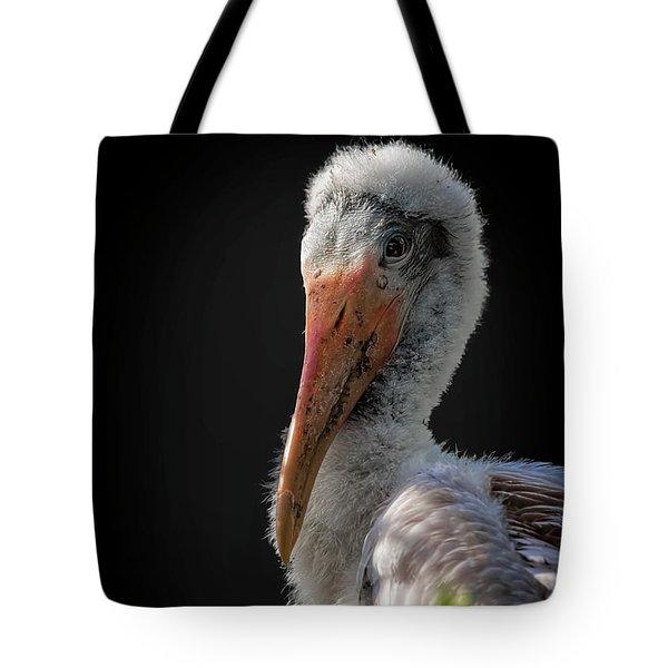 My First Sitting Tote Bag by Cyndy Doty