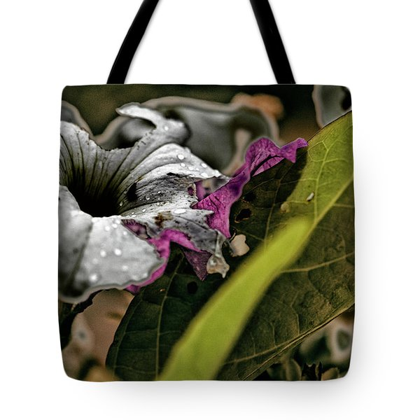 My How Your Beauti Is Evolving Tote Bag