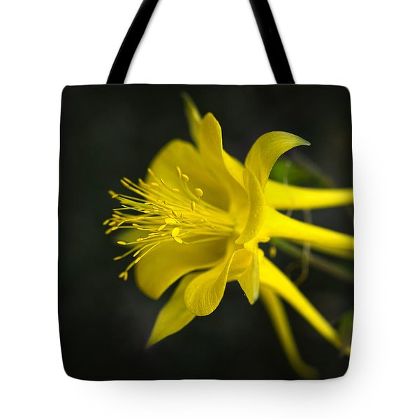 My Love For You Will Last Tote Bag