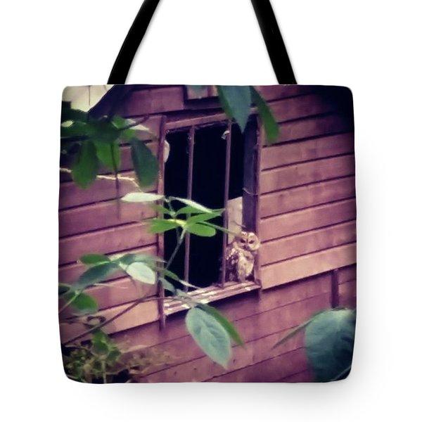 Curious Neighbour  Tote Bag