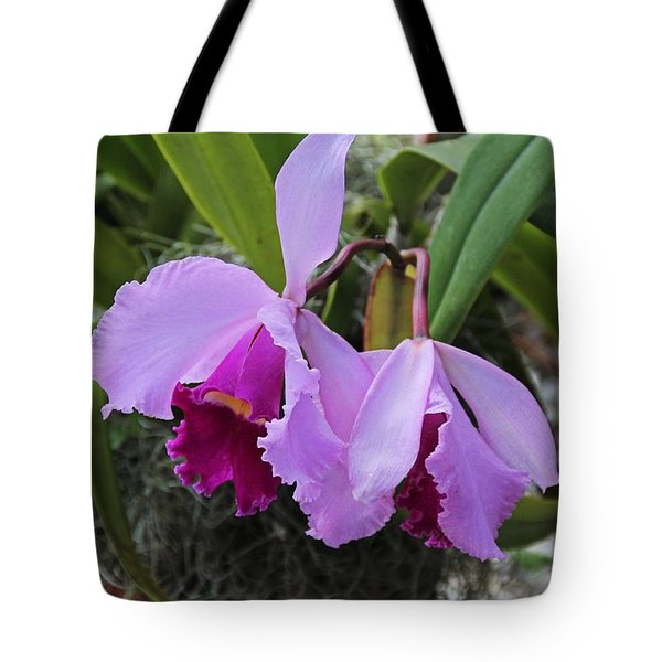 Tote Bag featuring the photograph My Orbit by Michiale Schneider