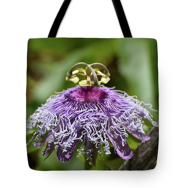 My Passion Tote Bag