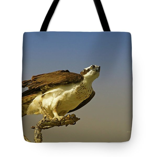 Tote Bag featuring the photograph My Pose For You by Deborah Benoit