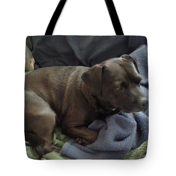 My Puppy Bella Tote Bag by Jewel Hengen