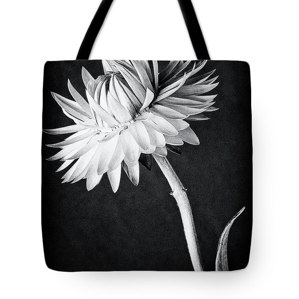 My Straw Hat Tote Bag