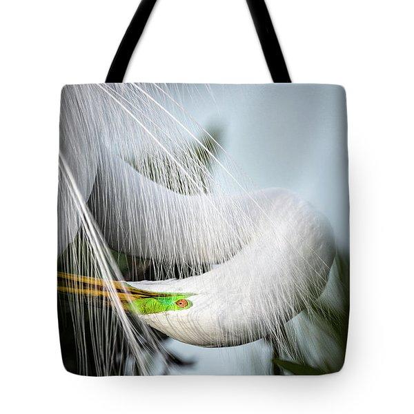 My Veil Of Secrecy Tote Bag