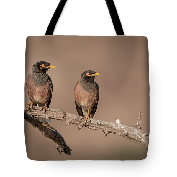 Myna Pair Tote Bag