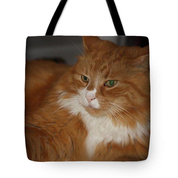 Mysterious Cat Tote Bag