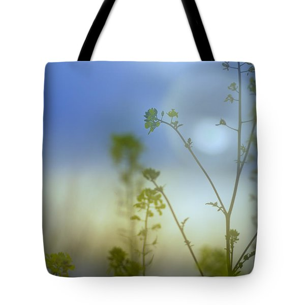 Mysterious Forest At Dusk Blue Tote Bag by Guido Montanes Castillo