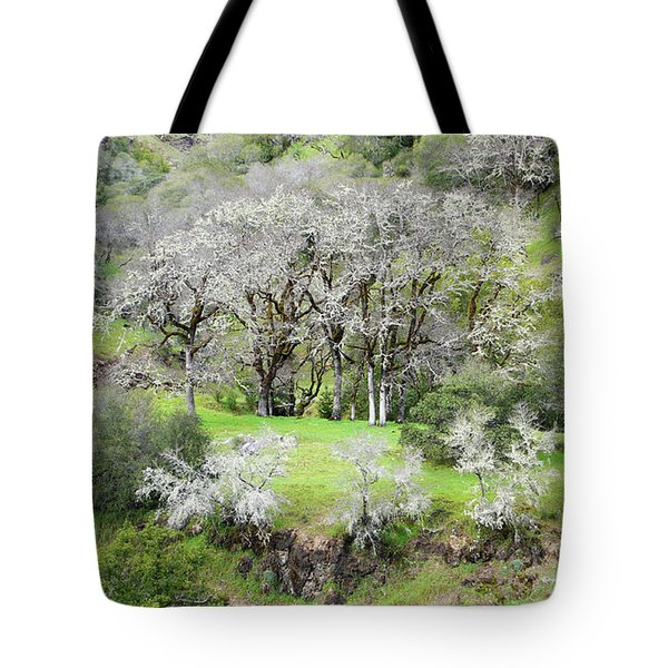 Mysterious Landscape In Sonoma County Tote Bag