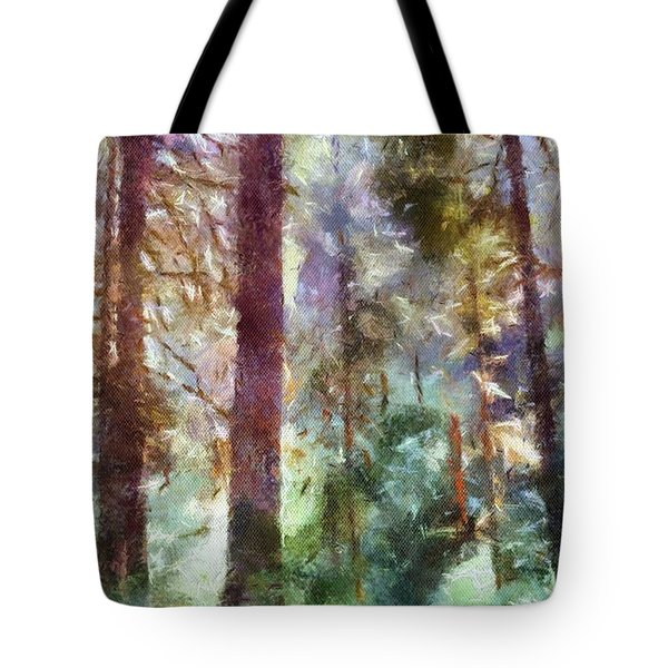 Mysterious Wood Tote Bag