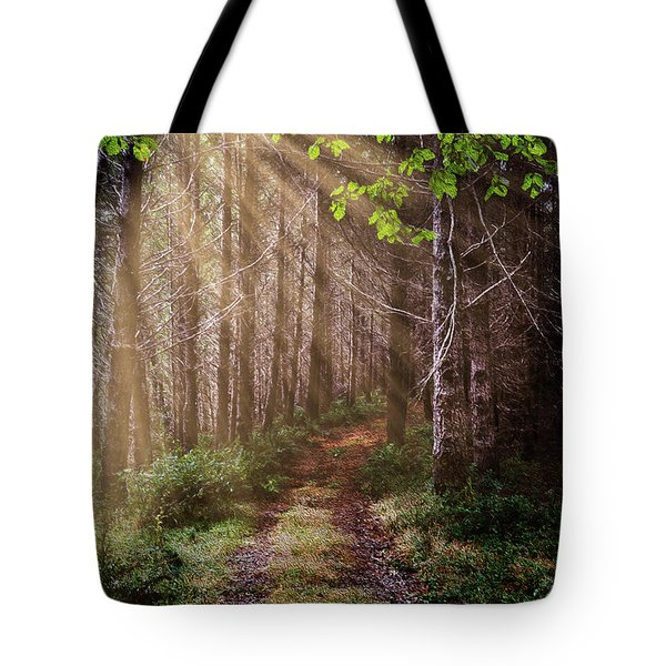 Tote Bag featuring the photograph Mystery At Dawn by Debra and Dave Vanderlaan