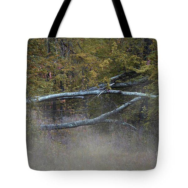 Tote Bag featuring the photograph Mystery In The Fall by Skip Willits