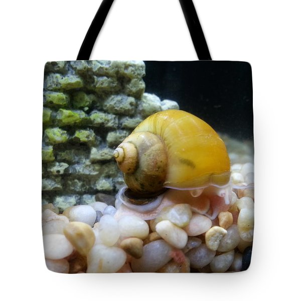 Mystery Snail Tote Bag