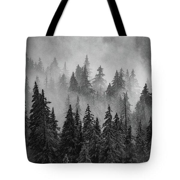 Mystic  Tote Bag by Dustin LeFevre