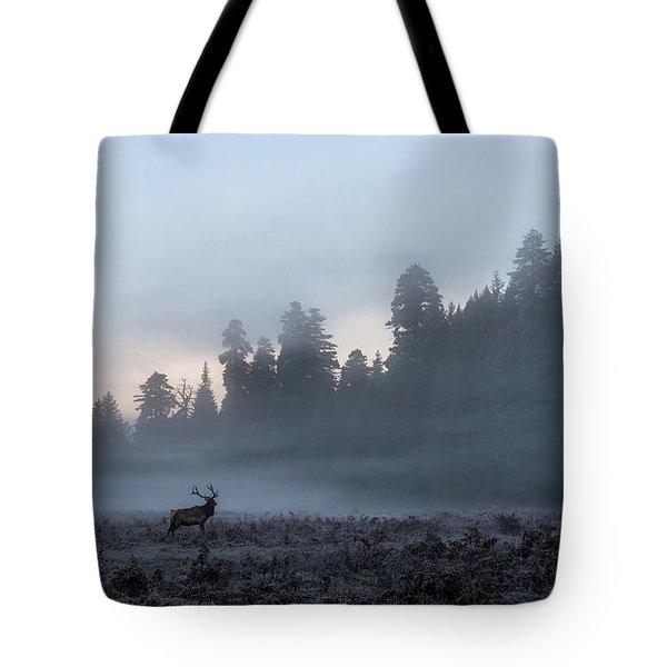 Mystic Elk Tote Bag