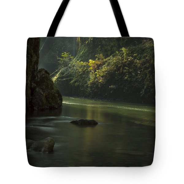 Mystical Canyon Tote Bag