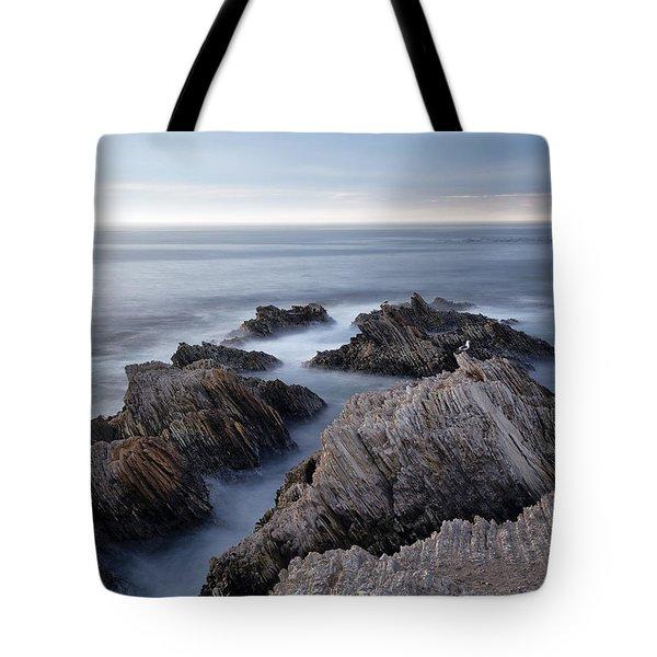 Mystical Moment Tote Bag