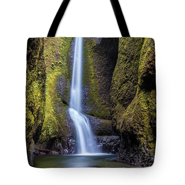 Mystical Oneonta Falls Tote Bag by Pierre Leclerc Photography