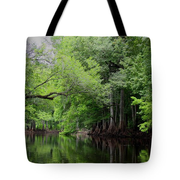Tote Bag featuring the photograph Mystical Withlacoochee River by Barbara Bowen