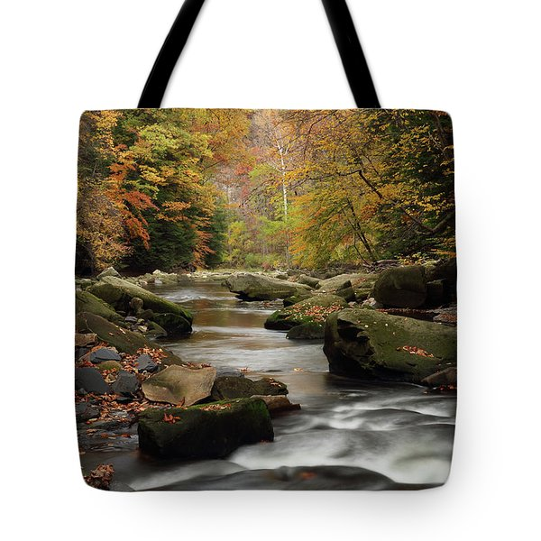 Mystique Waters Tote Bag