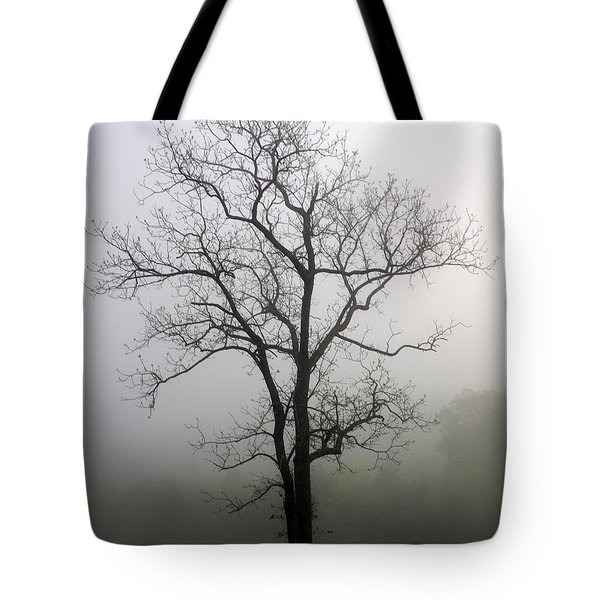 Mysty Tree 3 Tote Bag by Marty Koch