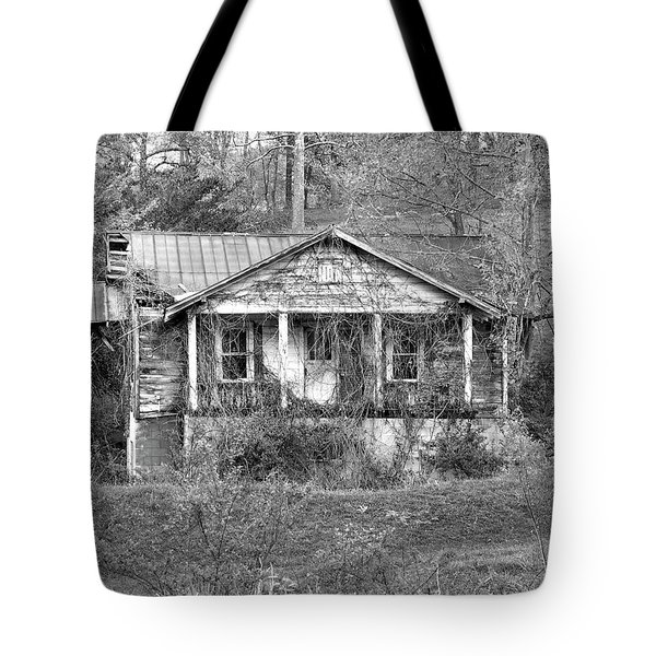 Tote Bag featuring the photograph N C Ruins 1 by Mike McGlothlen