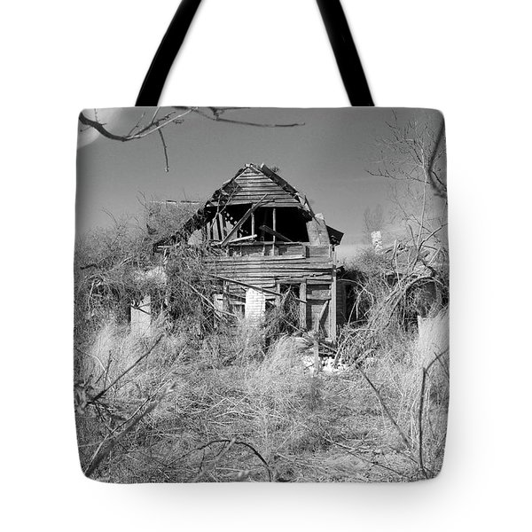 Tote Bag featuring the photograph N C Ruins 2 by Mike McGlothlen