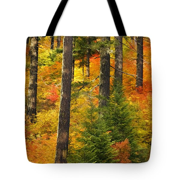 N W Autumn Tote Bag by Wes and Dotty Weber