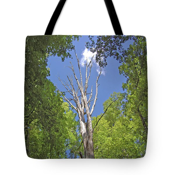 Naked Amongst Friends Tote Bag by DigiArt Diaries by Vicky B Fuller