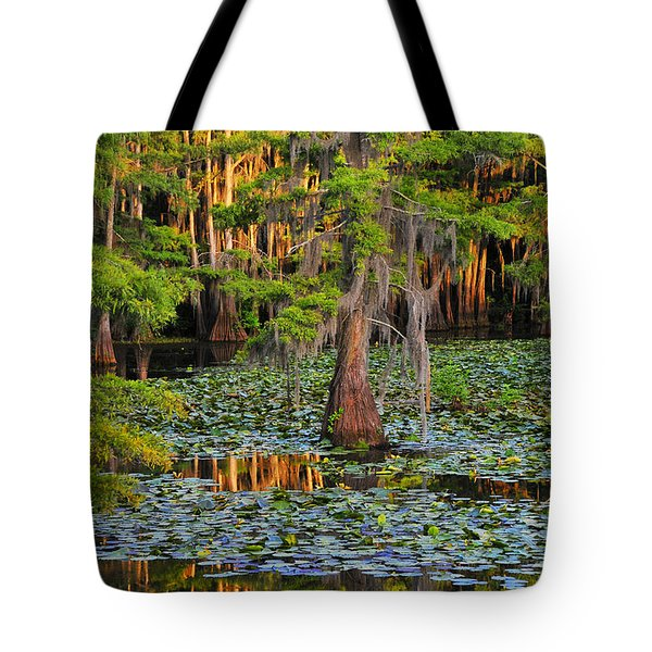 Tote Bag featuring the photograph Naked by Skip Hunt