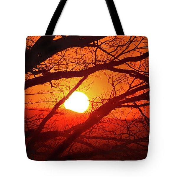 Naked Tree At Sunset, Smith Mountain Lake, Va. Tote Bag
