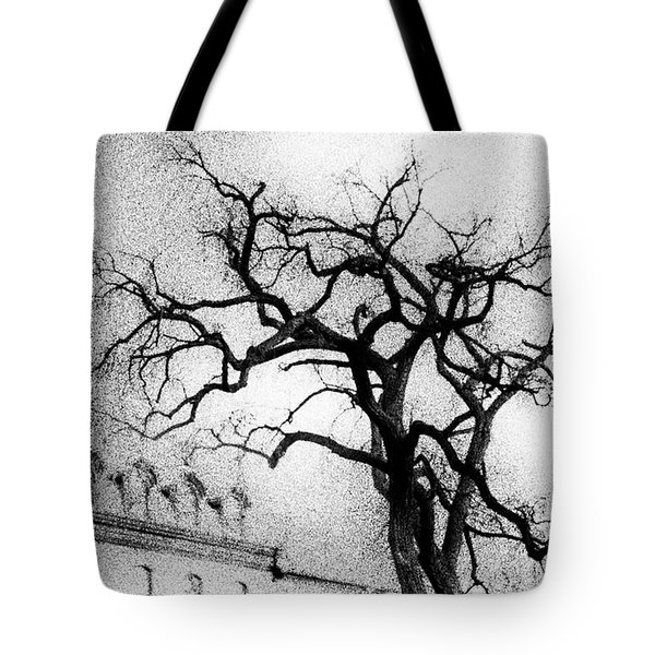 Naked Tree Tote Bag