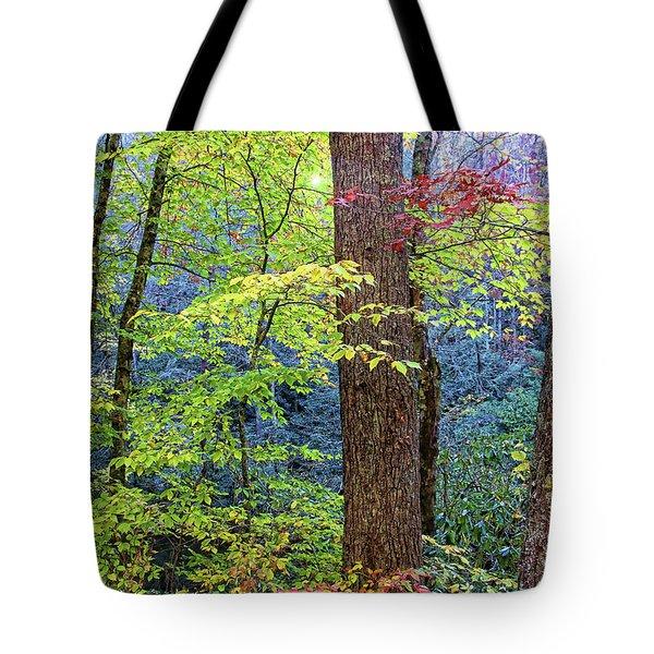 Nantahala Tote Bag