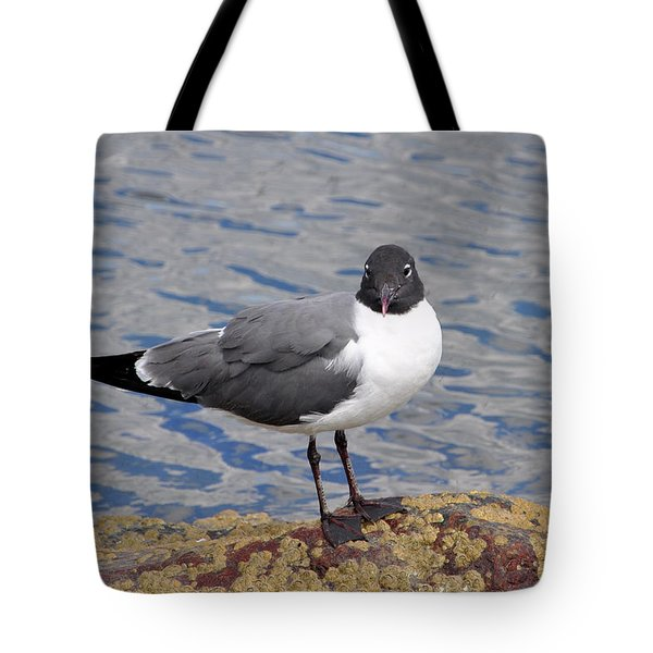 Bird Tote Bag by Glenn Gordon