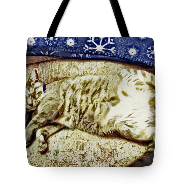 Nap Position Number 16 Tote Bag by David G Paul
