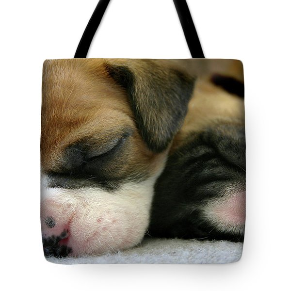 Tote Bag featuring the photograph Nap Time by Bob Cournoyer