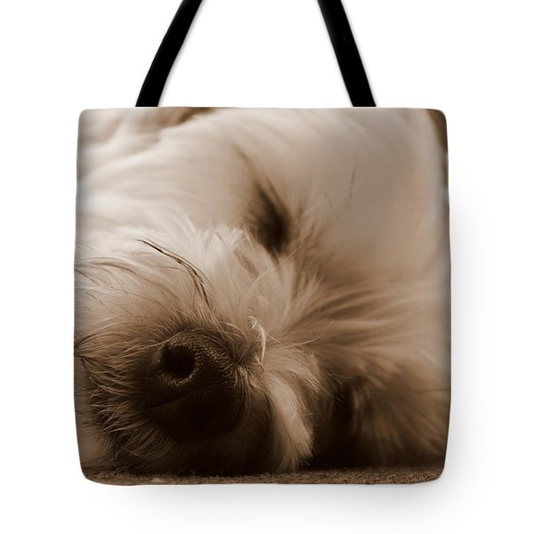 Nap Time Tote Bag by Ed Smith