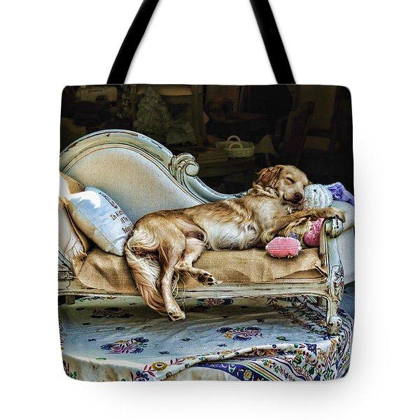 Nap Time Tote Bag by Edward Sobuta