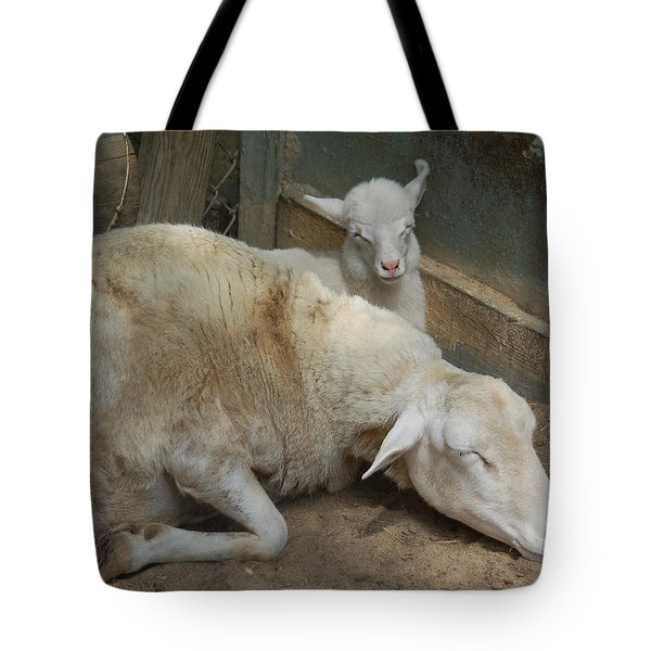 Nap Time Tote Bag by Suzanne Gaff