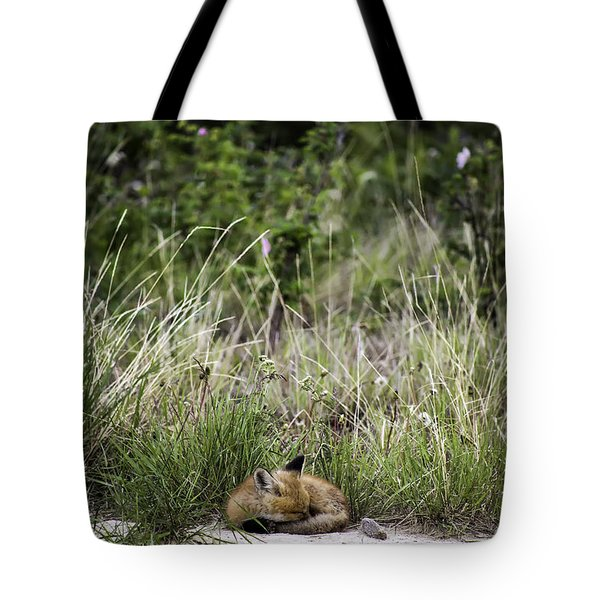 Nap Time Tote Bag