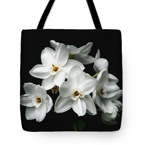Narcissus The Breath Of Spring Tote Bag by Angela Davies