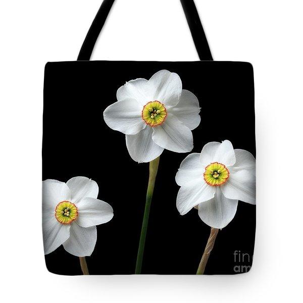 Narcissus 'poeticus' Tote Bag
